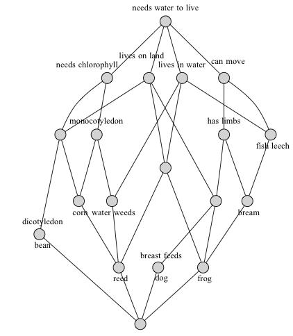 A concept lattice